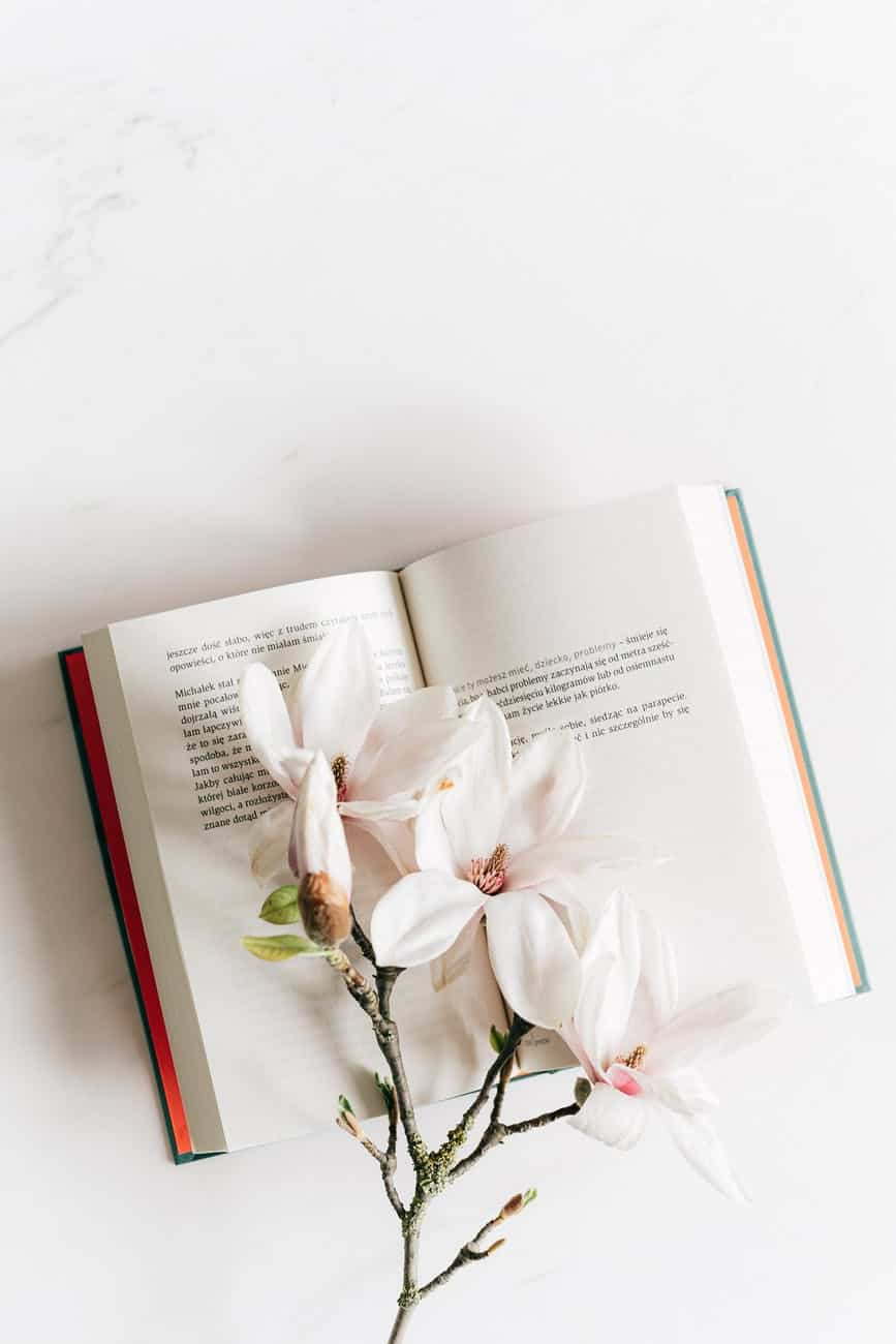 opened book with twig of magnolia best classic novels to make you love classics