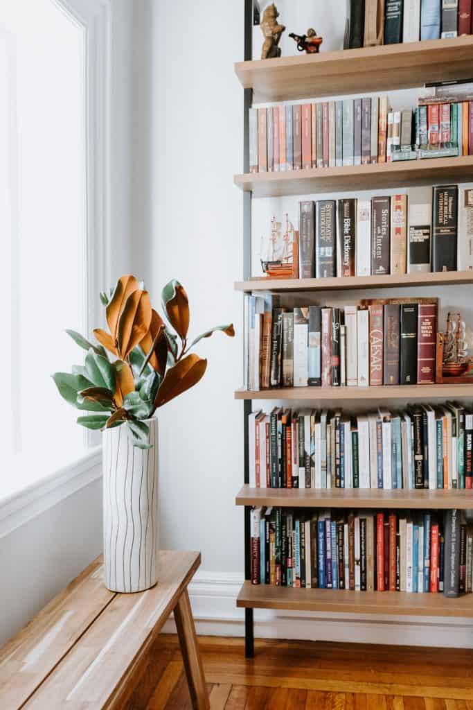 best books i've read since finishing university, bookshelf, cosy, plant, books